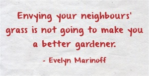Envying-your-neighbours